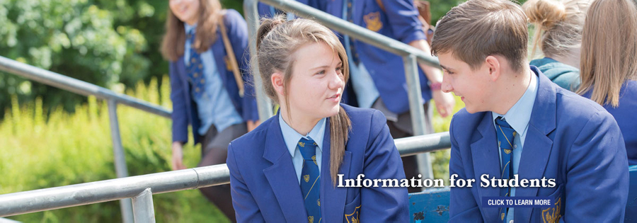 web design for farnborough school