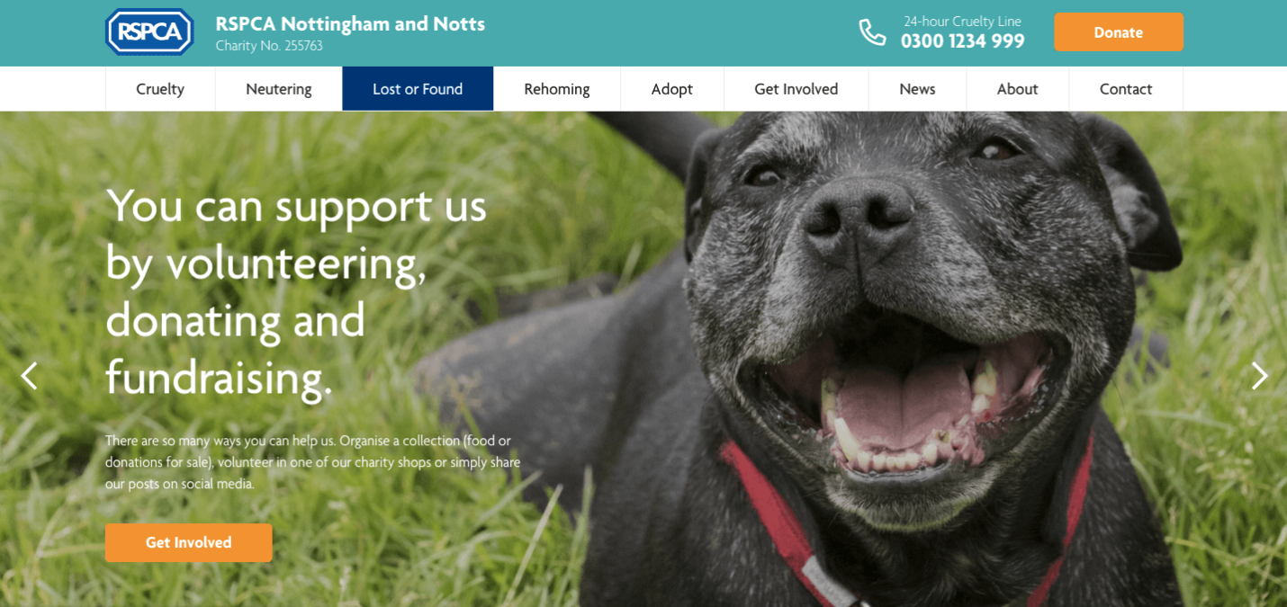 The RSPCA's New Site Gets Tails (and Tongues) Wagging